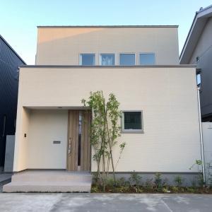 ACTUS金沢店プロデュース。家具も、照明も、小物も全てアクタスでコーディネートできる定額制の家、 『ACTUS LABO』のモデルハウスです。